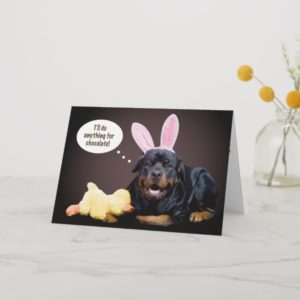 A Rottie Easter Wish Holiday Card
