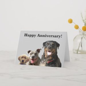 Adorable Pets Anniversary Card