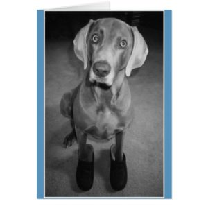 """Dog in Clogs"" - funny blank b&w art card"