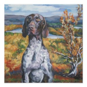 German Shorthaired Pointer Art Print gsp