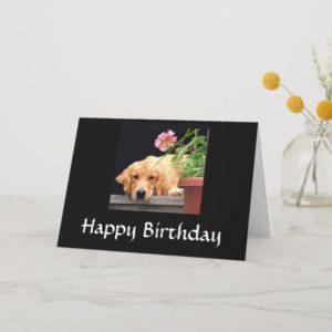 Golden Retriever Happy Birthday Card
