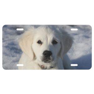 Golden Retriever Puppy Dog License Plate