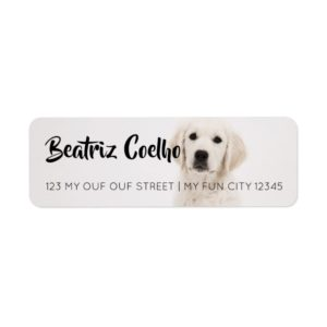 Golden Retriever Puppy Dog Themed Decorative Plain Label