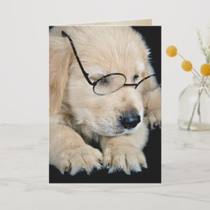 Golden Retriever puppy with glasses Card