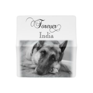 Gorgeous German Shepherd Checkbook Cover