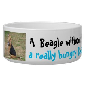 Hungry Beagle Bowl