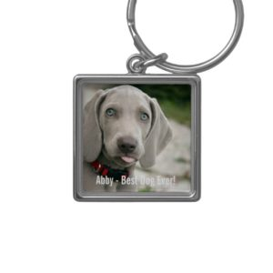 Personalized Weimaraner Dog Photo and Dog Name Keychain
