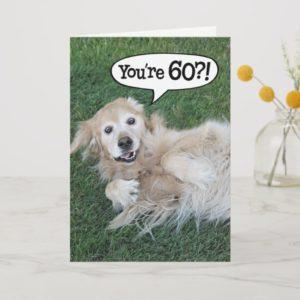 Shocked Golden Retriever 60th Birthday Card