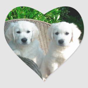 White Golden Retriever Dogs Sitting in Fiber Chai Heart Sticker