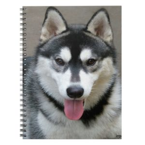 Alaskan Malamute Dog Photograph Notebook