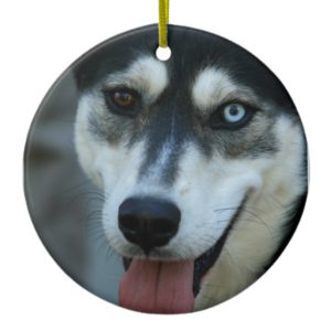 Beautiful One Blue Eye Siberian Husky Ceramic Ornament