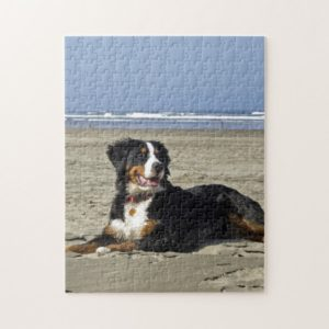 Bernese Mountain dog beautiful photo jigsaw puzzle