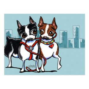 Boston Terriers Leashed Postcard