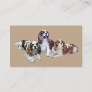Cavalier King Charles Spaniel Breede Business Card