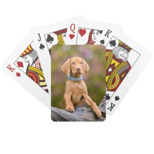 "Cute puppyeyed Hungarian Vizsla Dog Puppy Photo /"" Playing Cards"