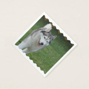 Cute Siberian Husky Paper Napkin