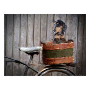 Dachshund In a Basket PostcardMagnet Postcard