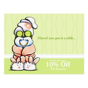Dog Groomer Spa Shih Tzu Cucumber Coupon Mailer Postcard