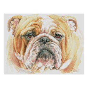 English Bulldog Face Watercolor painting Postcard