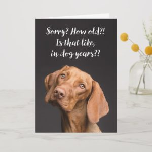 Funny Dog Years Birthday Card