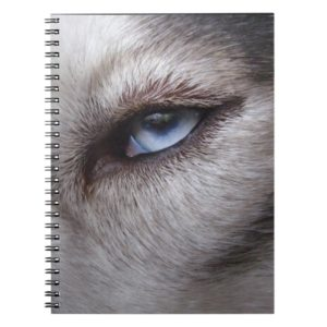 Husky Eye Notebook Siberian Husky Gifts & Books
