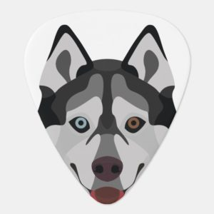 Illustration dogs face Siberian Husky Guitar Pick