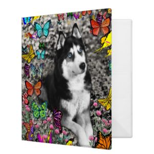 Irie the Siberian Husky in Butterflies Binder