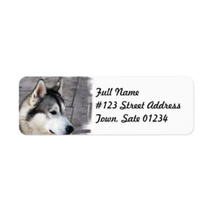 Malamute Dog Mailing Label
