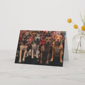Merry Christmas Pups Card