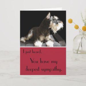 Miniature Schnauzer belated sympathy Card