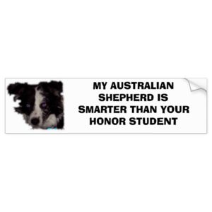 Niobe CO, MY AUSTRALIAN SHEPHERD IS SMARTER THA... Bumper Sticker