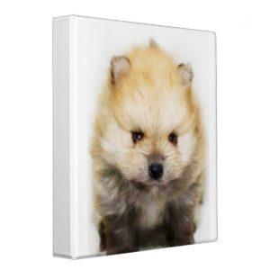 Pomeranian puppy binder