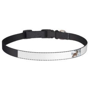 shetland sheepdog full.png pet collar