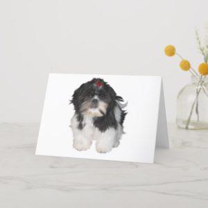 Shitzu Shih Tzu Puppy Dogs Card