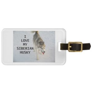 siberian husky grey and white love w pic bag tag