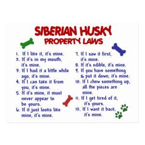 SIBERIAN HUSKY Property Laws 2 Postcard