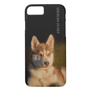 Siberian Husky Puppy Phone Case